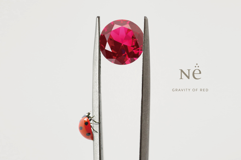 NEW RUBY EXPERIENCE COMING SOON - N.e / エヌ・イー